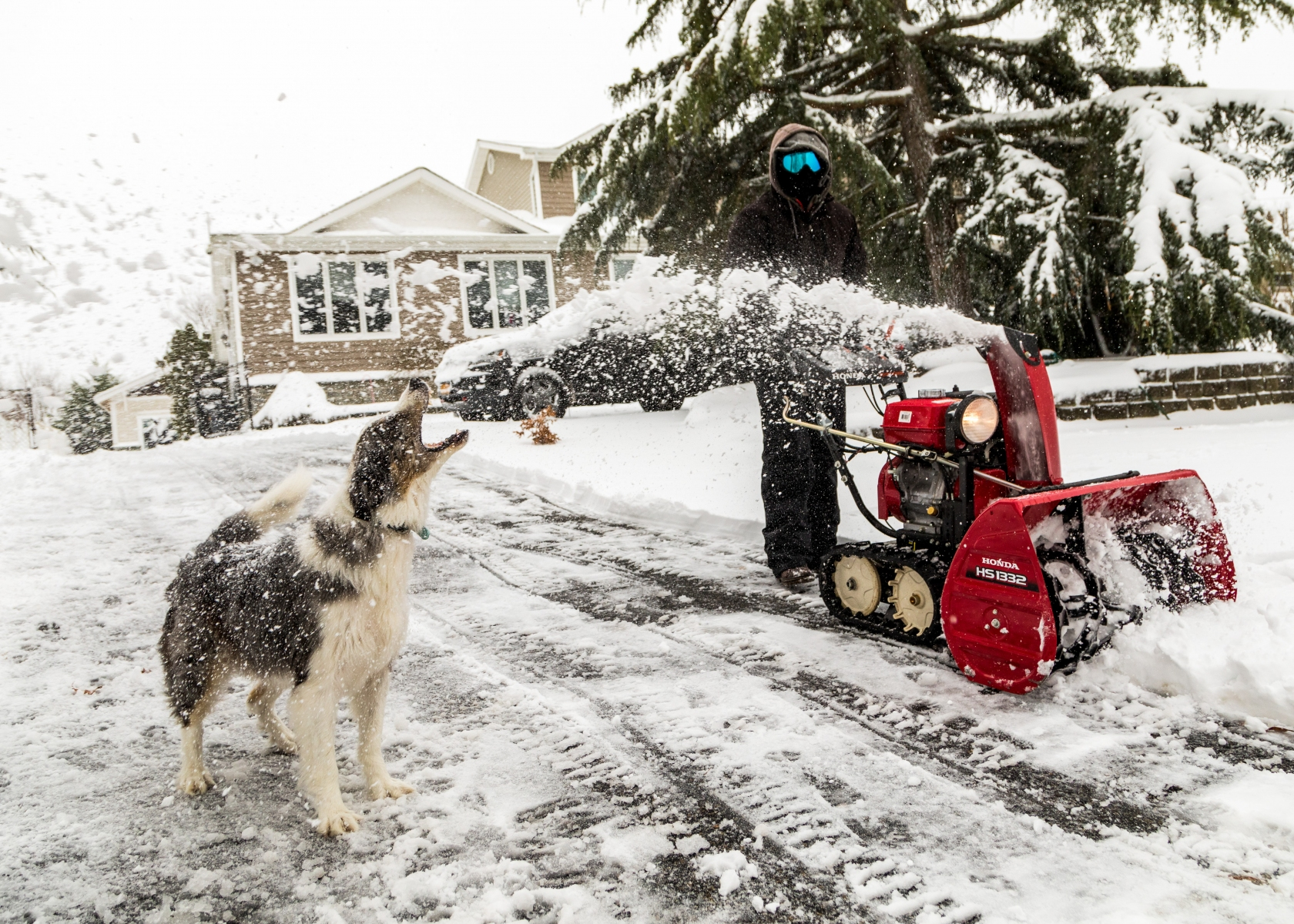 "1ST PLACE - Barry Sloan – Newsday – ""Stryker's Snow Snacks"""